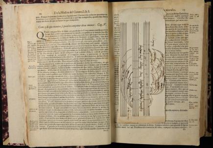 p.12-13